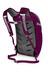 Osprey Daylite Plus Backpack Eggplant Purple